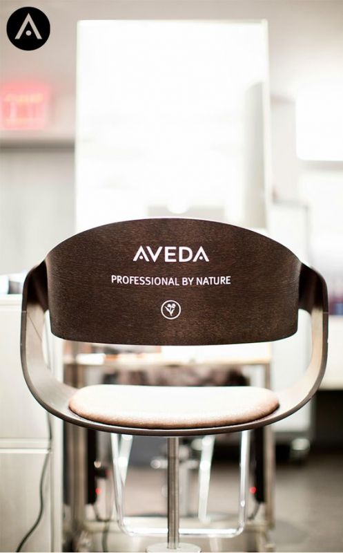 beauty salon chair with words on back Aveda Professional by nature