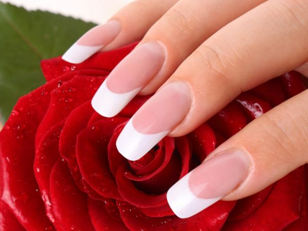 Long french tip acrylic nails on woman's hand covering a red rose